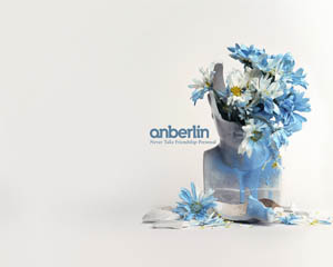 Anberlin Layout