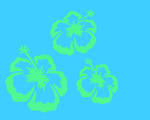 Hawaiian Blue Layout